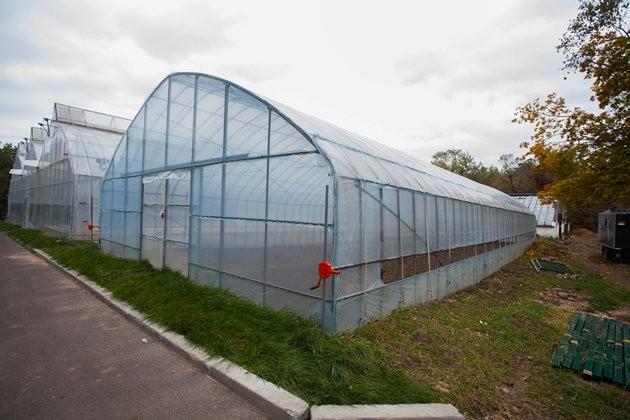 Как трансформировался Ботанический сад Алматы
