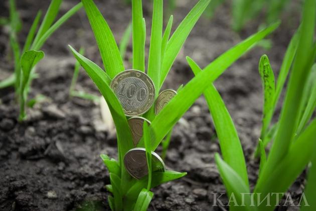 Кредиторы продолжают верить всельское хозяйство Казахстана
