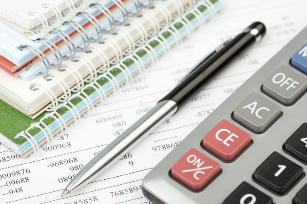 Услуги портала электронного правительства всфере налогообложения