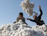 Узбекистан упрощает ввоз ивывоз валюты