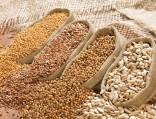 Продкорпорация закупит укрестьян 2млн тонн зерна