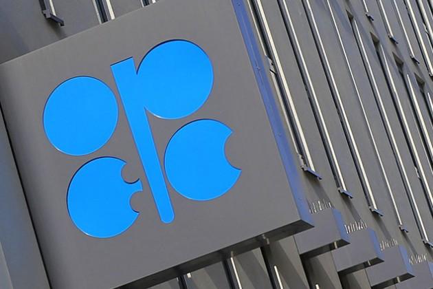 Казахстан продолжит сотрудничество сОПЕК